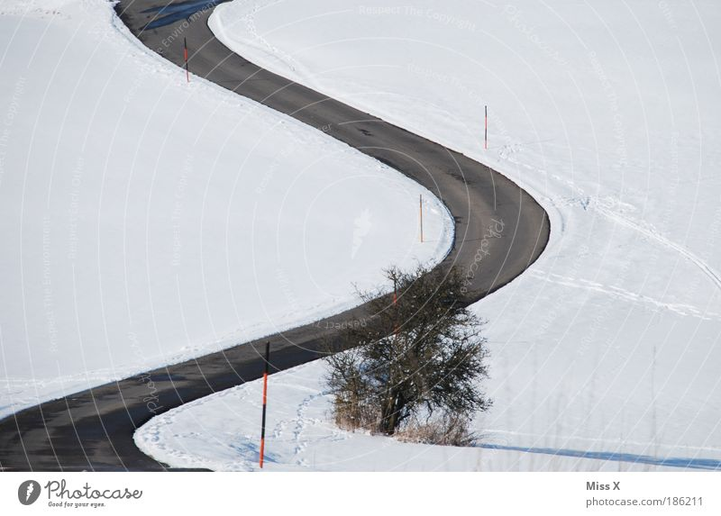 slalom Trip Snow Winter vacation Environment Nature Climate Weather Bushes Hill Mountain Transport Traffic infrastructure Road traffic Street Cold Dangerous