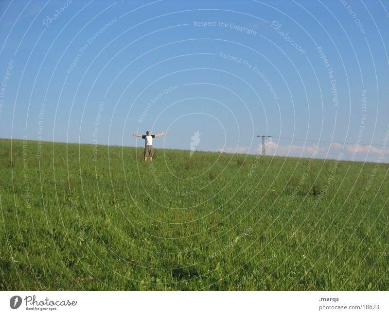 Human being Joy Clouds To talk Meadow Freedom Scream Guy To enjoy
