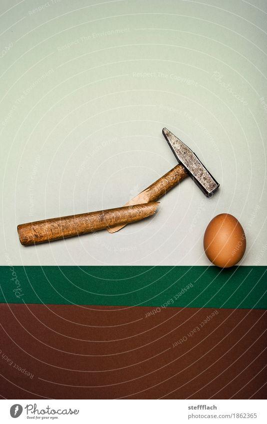 Always fixed druff Hammer Wood Metal Egg raw egg Broken Breakage Funny Strong Brown Gray Green Self-confident Power Willpower Anger Force Effort Movement Energy