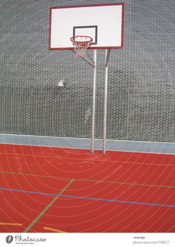 basket Basket Field Attack Defensive Sports Playing Ball sports Basketball Circle rebound Movement Throw marqs