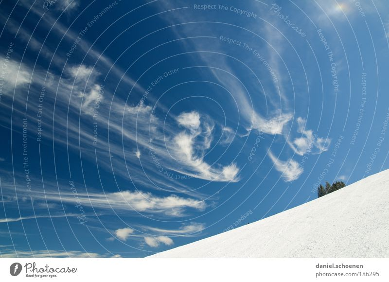 Sky Nature Blue White Winter Clouds Environment Snow Weather Climate Exceptional Beautiful weather Winter sports Black Forest Baden-Wuerttemberg