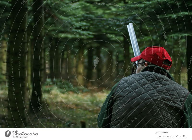 Hunting Masculine Man Adults Head Back 1 Human being Nature Autumn Tree Forest Clothing Cap Rifle Observe Think Crouch Looking Wait Authentic Dark Near Green