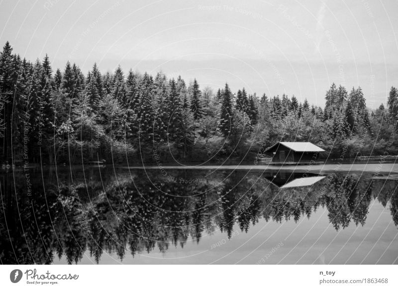 House in the lake Environment Nature Landscape Water Winter Ice Frost Snow Forest Lakeside Freeze Happy Black White Emotions Moody Loneliness sea hut