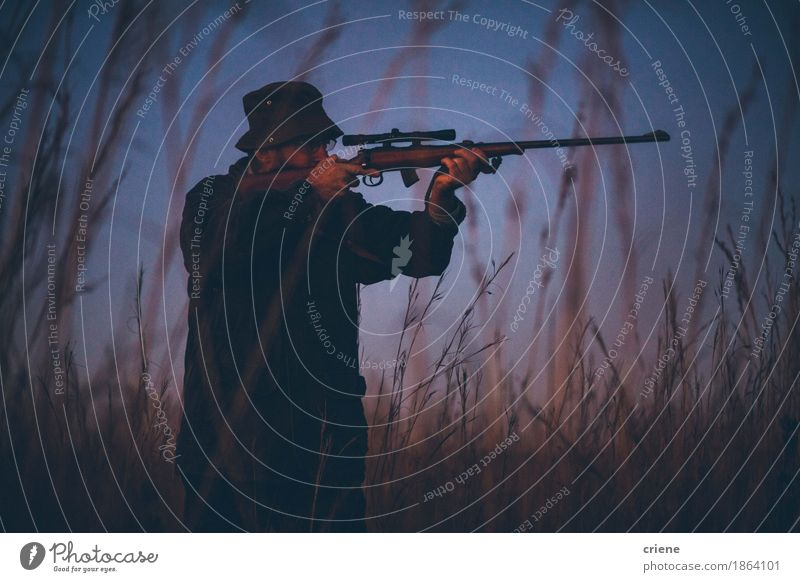 Hunter aiming prey on field with his rifle in sunrise Nature Man Adults Senior citizen Lifestyle Sports Grass Wild Leisure and hobbies Field 45 - 60 years 60 years and older Male senior Passion Hunting Grassland