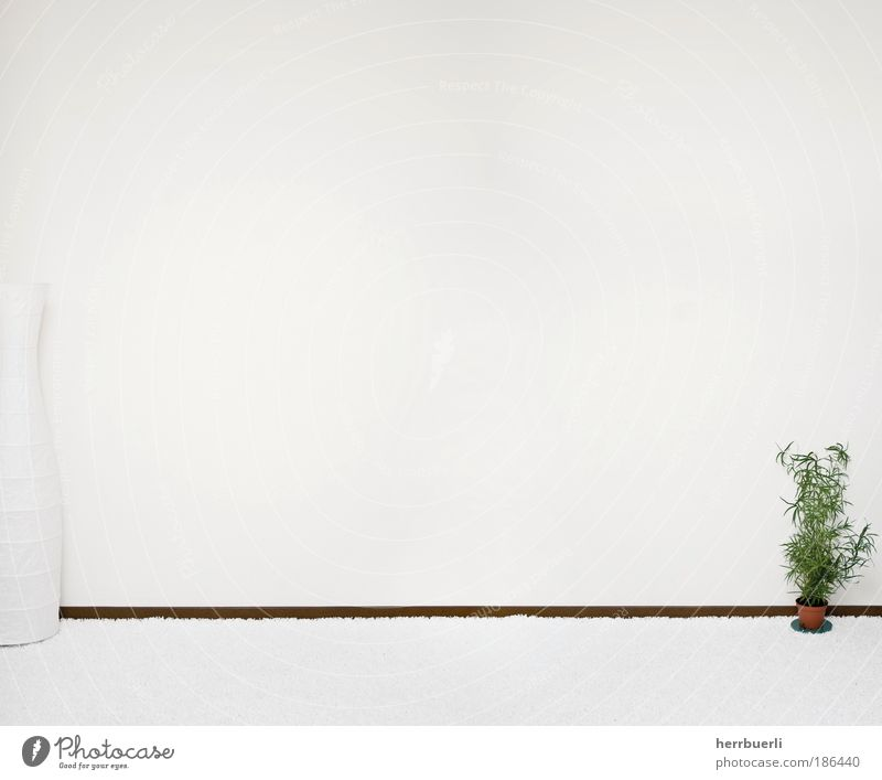 room wall Style Design Wall (barrier) Wall (building) Stone Kneel Esthetic Infinity Moody Calm Self Control Relaxation Living room Subdued colour Interior shot