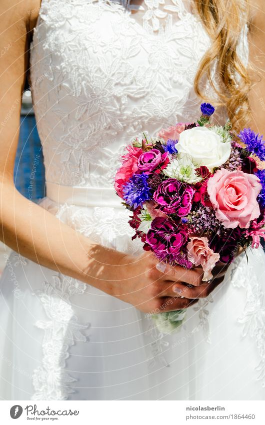 Wedding II Luxury Elegant Style Beautiful Event Feasts & Celebrations Feminine Young woman Youth (Young adults) Couple Life 1 Human being 18 - 30 years Adults