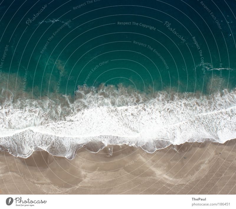 fluid dynamics Nature Water Ocean Pacific Ocean Exceptional Blue Brown Life Chile iquique Paragliding Colour photo Subdued colour Exterior shot