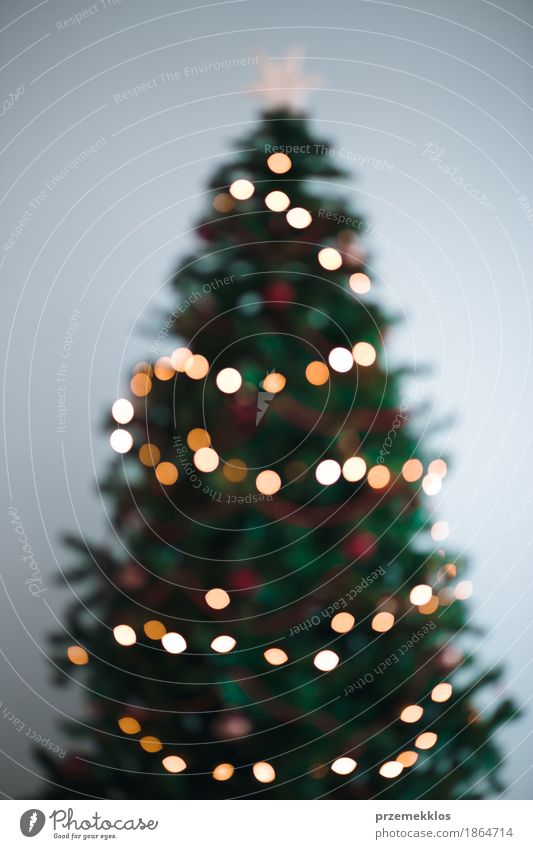 Blurred Christmas tree lights Decoration Christmas & Advent Tree Bright Green Tradition background blur christmas colorful Glow holiday illumination merry