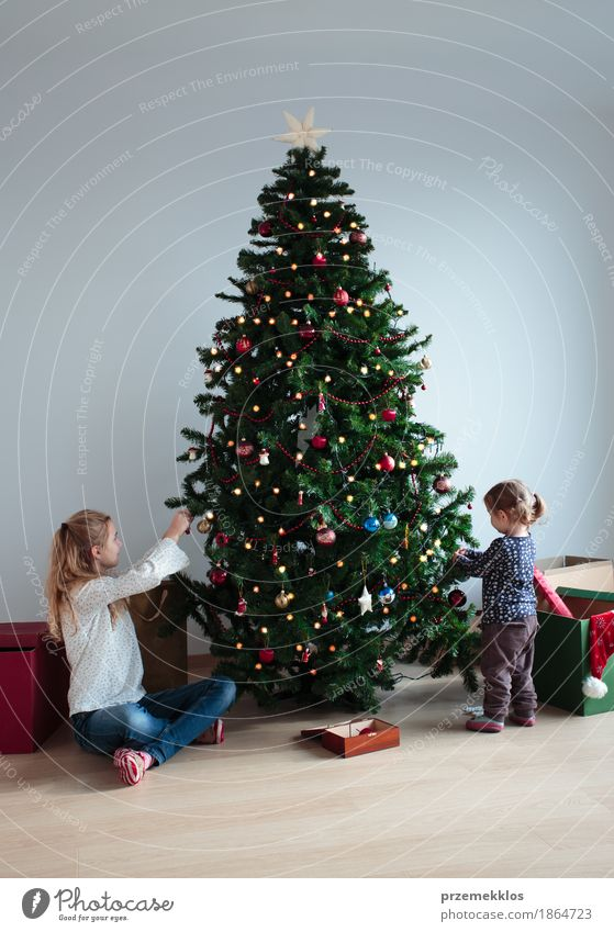 Young girl and her little sister decorating Christmas tree Human being Child Tree Joy Girl Lifestyle