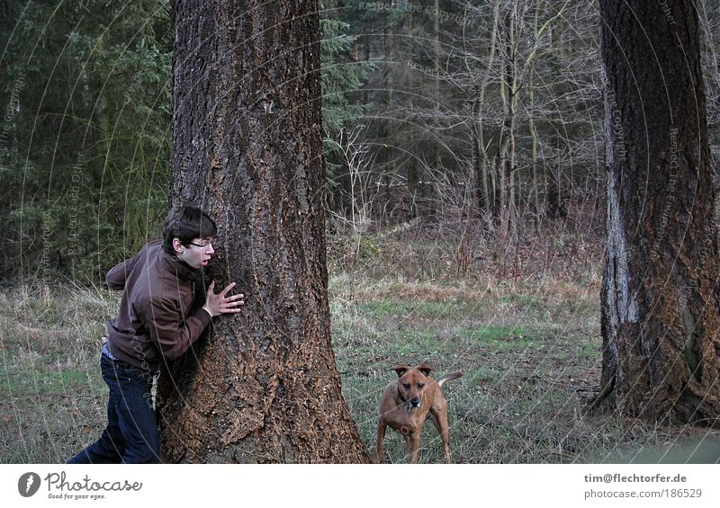 Robber and Shandarm Hunting Trip Hiking Human being Masculine Young man Youth (Young adults) 1 Pet Dog Animal Wood Going Embrace Wild Blue Brown Green Moody