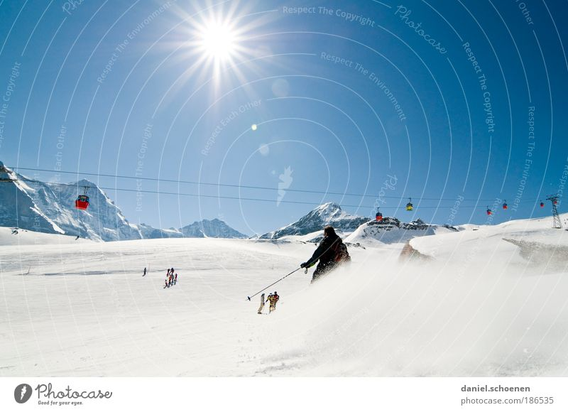 Sky Joy Winter Vacation & Travel Sports Snow Mountain Movement Happy Ice Back-light Skiing Frost Tourism Leisure and hobbies Climate