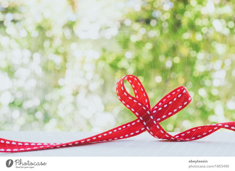 Red ribbon tied in a bow Lifestyle Style Joy Beautiful Nature Plant Tree Adventure Colour photo Multicoloured Close-up Detail Macro (Extreme close-up) Morning