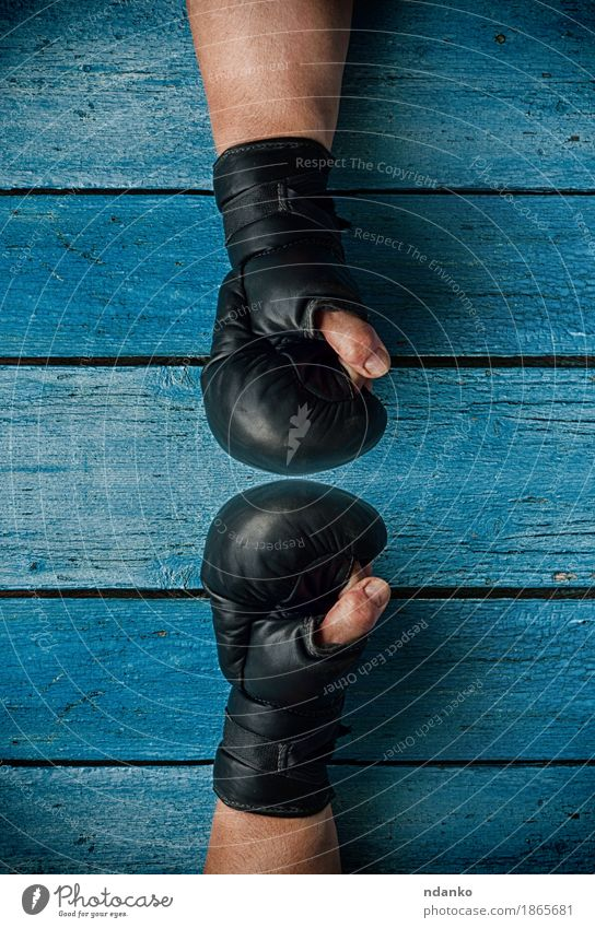 two fists in boxing gloves facing each other Sports Success Human being Man Adults Hand Fingers 1 30 - 45 years Old To talk Athletic Blue Competition