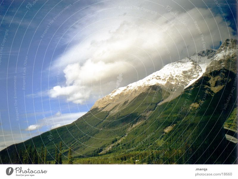 Covered Canada Forest Tree Peak Clouds Vail Mountain Snow hilltop Sky Rocky Mountains marqs