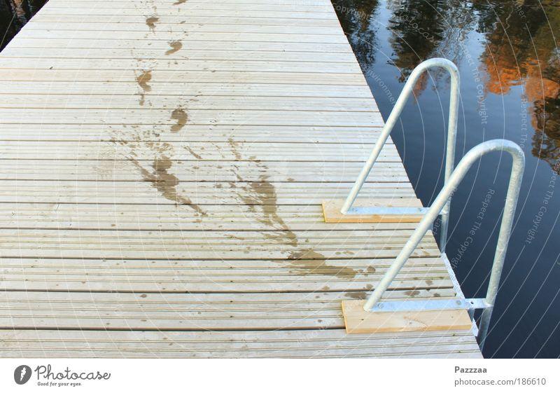 Human being Water Summer Feet Lake Brown Walking Drops of water Happiness Swimming & Bathing Environment Footbridge Footprint Lakeside