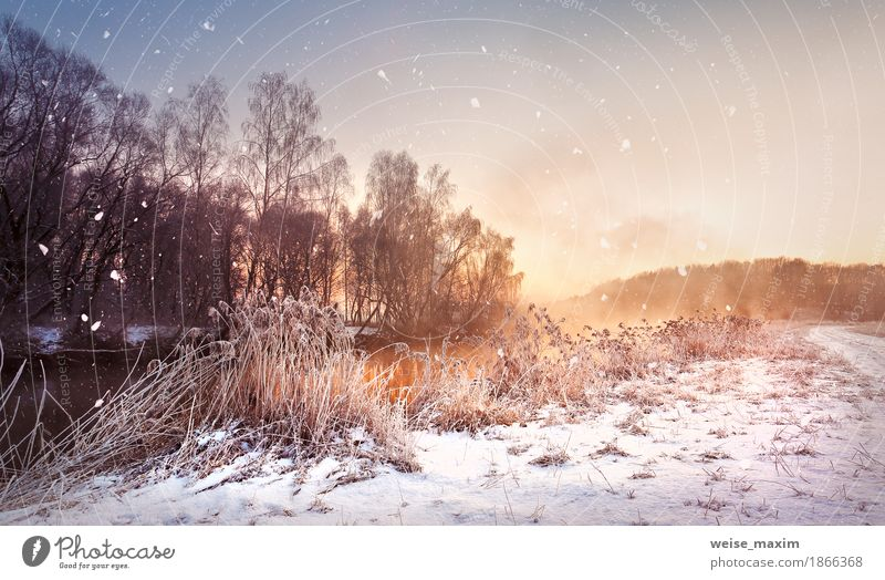 Winter misty dawn on the river. Snowflakes, snowfall. Sky Nature Vacation & Travel White Tree Landscape Far-off places Forest Meadow Natural Grass Freedom Lake