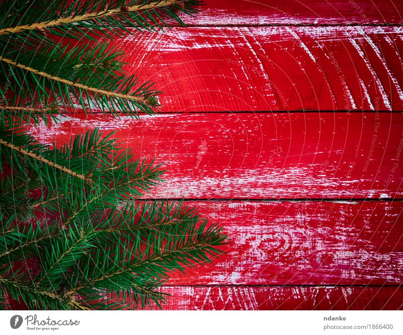 Red wood background with branch fir Winter Decoration Table Feasts & Celebrations Christmas & Advent Tree Wood Old Bright New Green Colour Idea Creativity