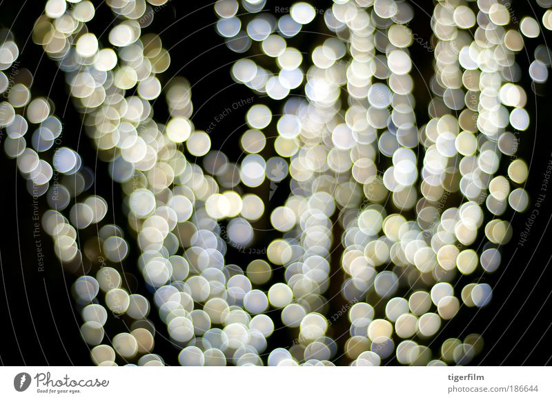 jazzy holiday lights Christmas & Advent Joy Yellow Happy Bright Art Brown Feasts & Celebrations Blonde Glass Gold Glittering Modern Esthetic Decoration