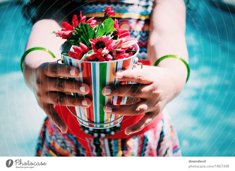 Young woman holding flowers in hand Decoration Bouquet Inspiration Love Beautiful Flower Welcome Multicoloured Bright Hold Red Colour photo Exterior shot