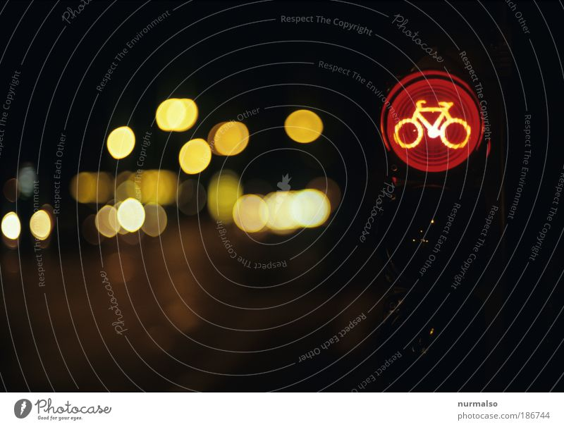 Bicycle makes Christmas Night life Going out Feasts & Celebrations Technology Environment Autumn Winter Ice Frost Deserted Transport Pedestrian Street