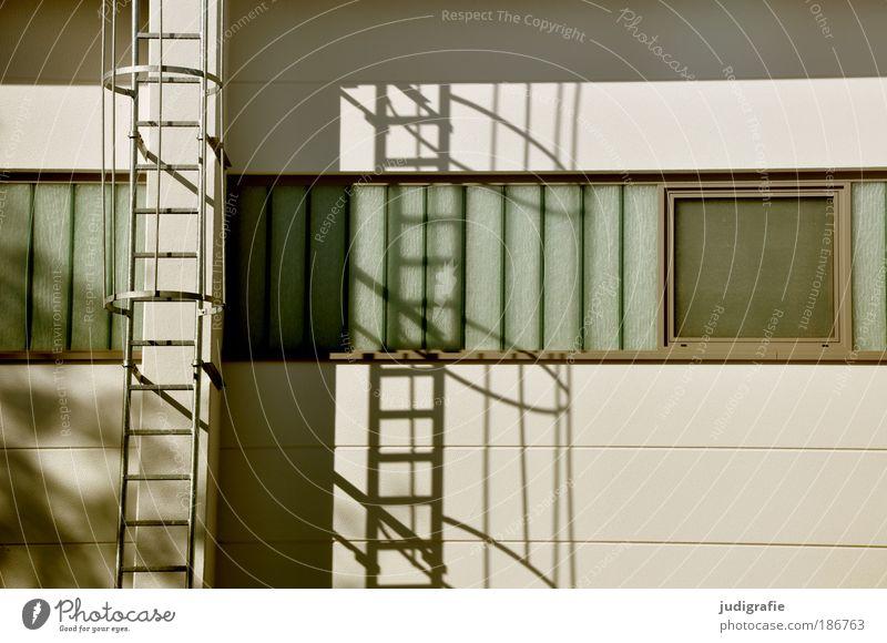 Window Wall (building) Building Wall (barrier) Facade Arrangement Living or residing Manmade structures Fire ladder
