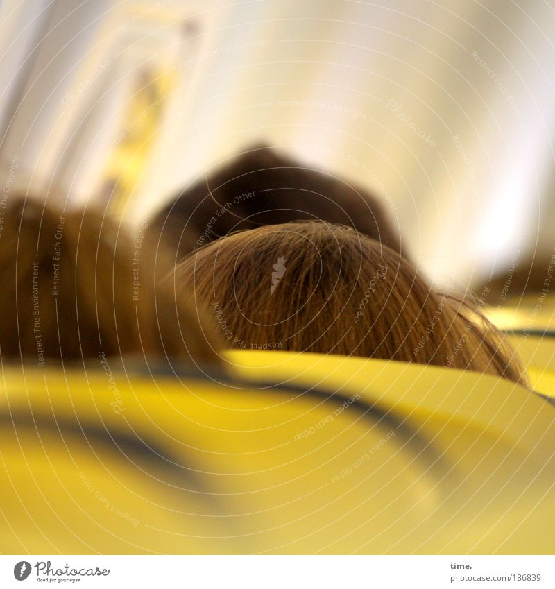 skyscrapers Head Human being Hair and hairstyles Seating Aviation Airplane Vacation & Travel Travel photography Sky Clouds cabin Yellow jammed Narrow Places