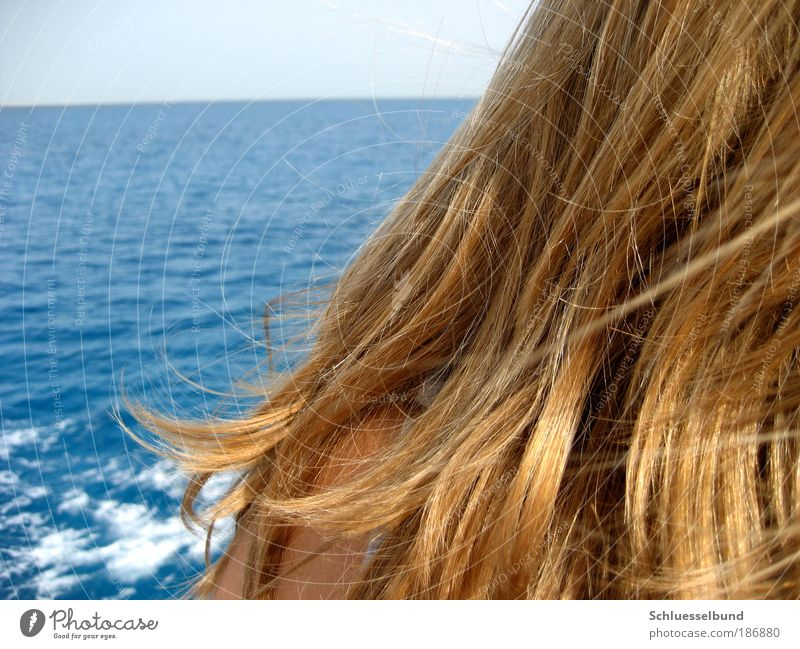 red sea Well-being Contentment Vacation & Travel Freedom Cruise Summer Sun Ocean Waves Human being Feminine Young woman Youth (Young adults) Skin Head Back 1