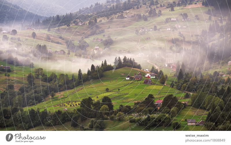 Alpine village in mountains. Smoke and haze Nature Vacation & Travel Plant Colour Green Beautiful White Tree Landscape House (Residential Structure) Forest Mountain Environment Autumn Meadow Natural