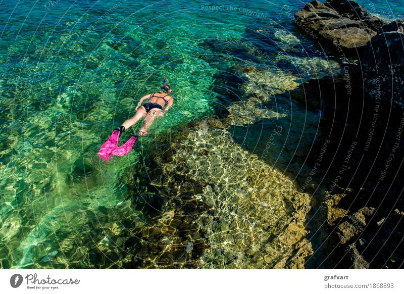 Beautiful woman in bikini snorkelling in the water at the coast Woman Bikini Coast Athletic Eroticism Snorkeling Vacation & Travel Action Relaxation Fitness