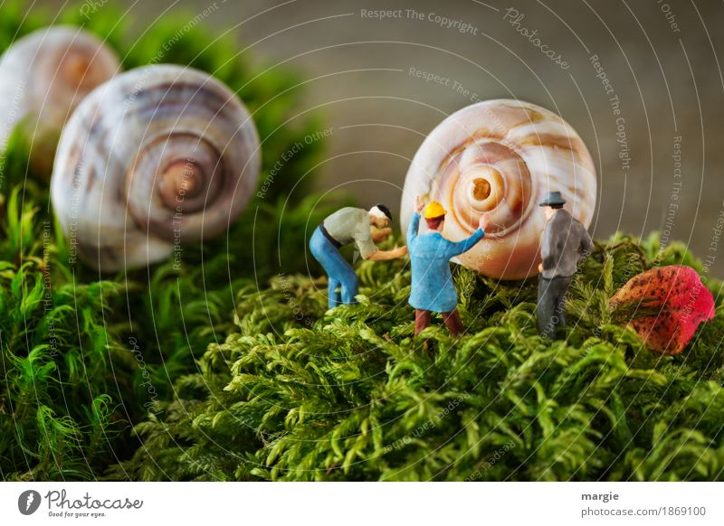 Miniwelten - Snail hole Services Construction site Human being Masculine Man Adults 3 Nature Plant Grass Moss Leaf Brown Green Snail shell Landscape format