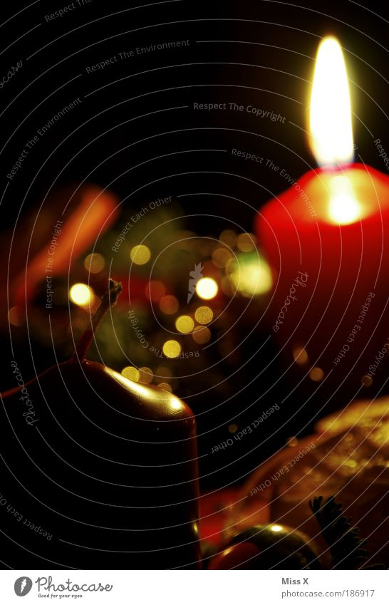 Advent Advent a little light is on Fragrance Decoration Feasts & Celebrations Illuminate Dark Glittering Beautiful Gold Emotions Moody Anticipation Idyll