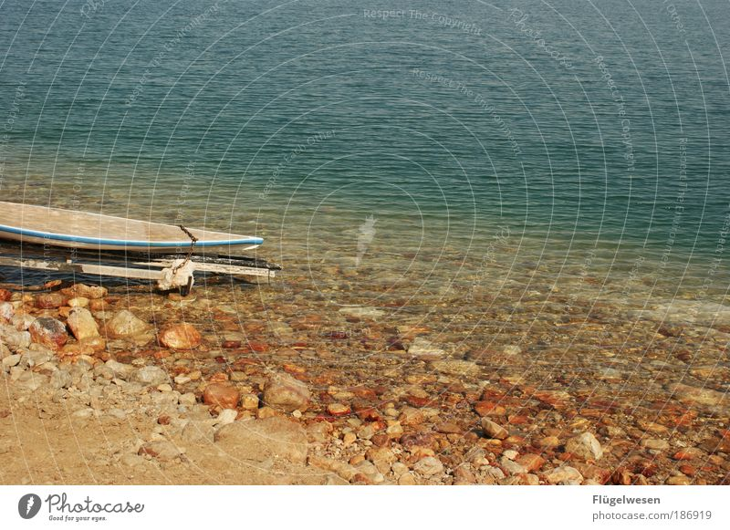Vacation & Travel Ocean Beach Coast Summer vacation Surfboard Pebble beach The Dead Sea