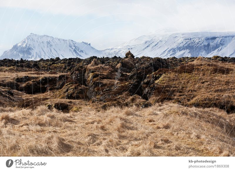 Mountain view in Iceland in spring Vacation & Travel Tourism Adventure Far-off places Winter Winter vacation Landscape Snæfellsnes volcano island volcanoes west