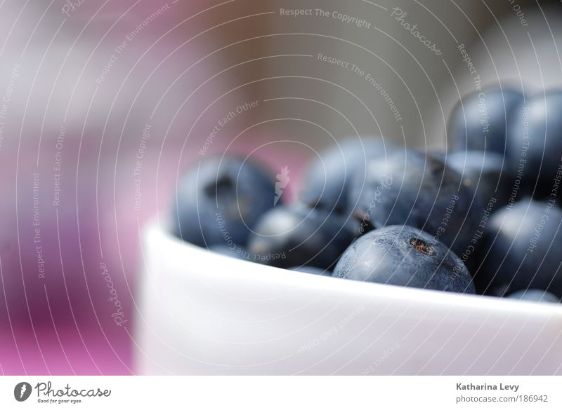 Blue White Summer Small Healthy Pink Fruit Food Authentic Nutrition Berries Sweet Round Joie de vivre (Vitality) Delicious Cup