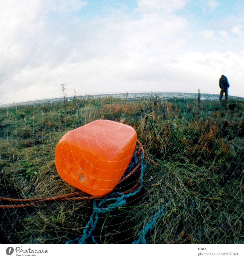 Human being Water Sky Beach Far-off places Meadow Orange Coast Environment Wet Signs and labeling Rope Horizon Near String Damp