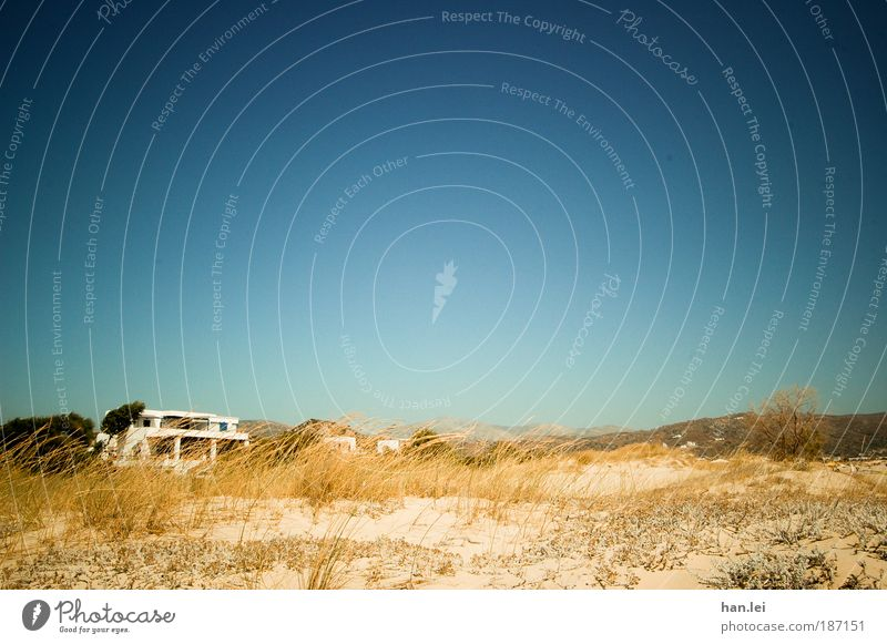 carefree Deserted Blue sky Colour photo Central perspective Copy Space top Beach dune Dune Sand Plant House (Residential Structure) resettlers Individual