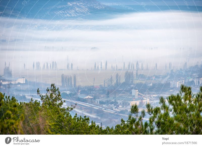 Misty town with trees and buildings Vacation & Travel Environment Nature Landscape Sky Clouds Fog Tree Meadow Field Forest Hill Small Town Industrial plant
