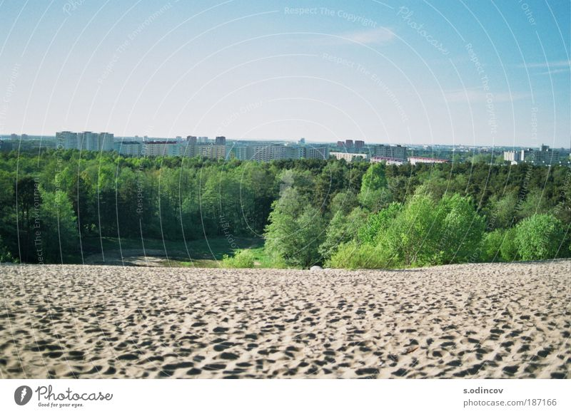 Sand, Park and blue Sky Environment Nature Landscape Cloudless sky Skyline Town Colour photo Exterior shot Deserted Day Sunlight Central perspective