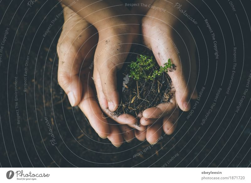 save the world, selective focus Nature Lifestyle Style Garden Earth Adventure