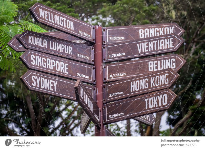 Sign post pointing towards destinations in Asia and Australia Vacation & Travel Green Far-off places Wood Exceptional Earth Brown Tourism Trip