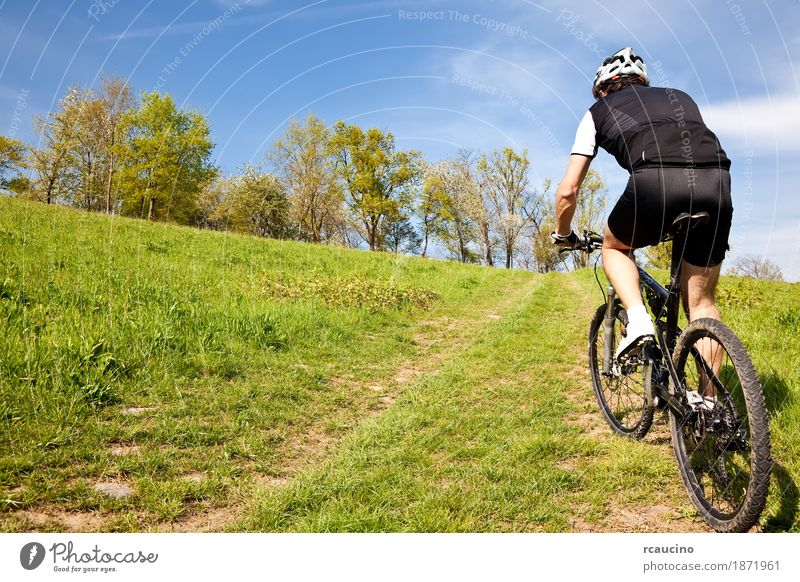 Mountain bike cyclist riding uphill along a country road Relaxation Summer Sports Man Adults Landscape Tree Grass Leaf Meadow Jacket Fitness Green Black