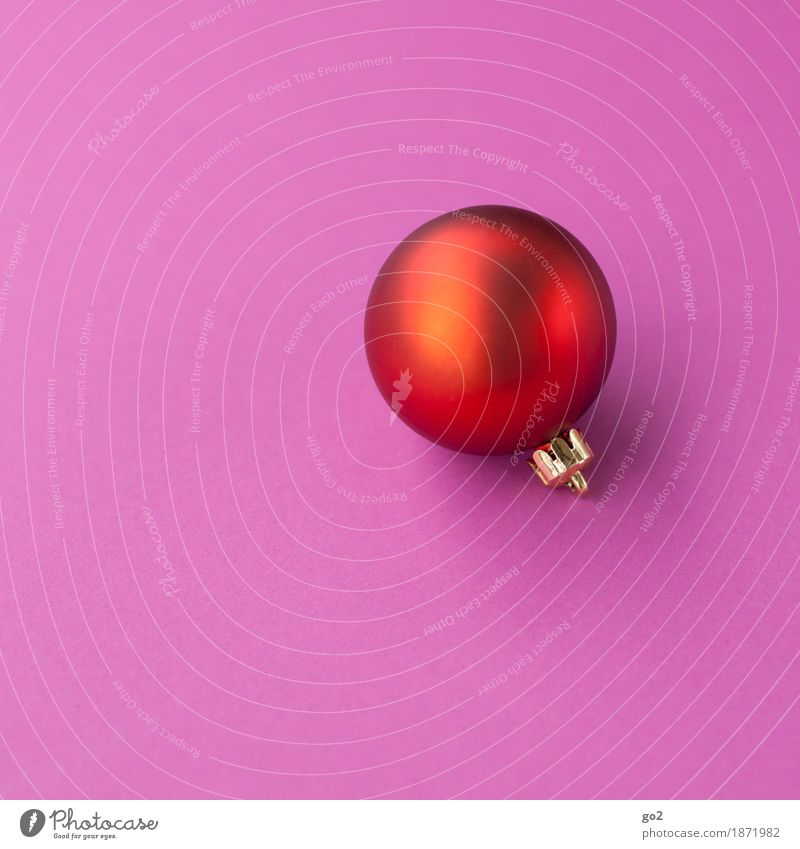 Christmas ball red Christmas & Advent Decoration Sphere Esthetic Round Violet Pink Red Anticipation Christmas decoration Christmas gift Colour photo