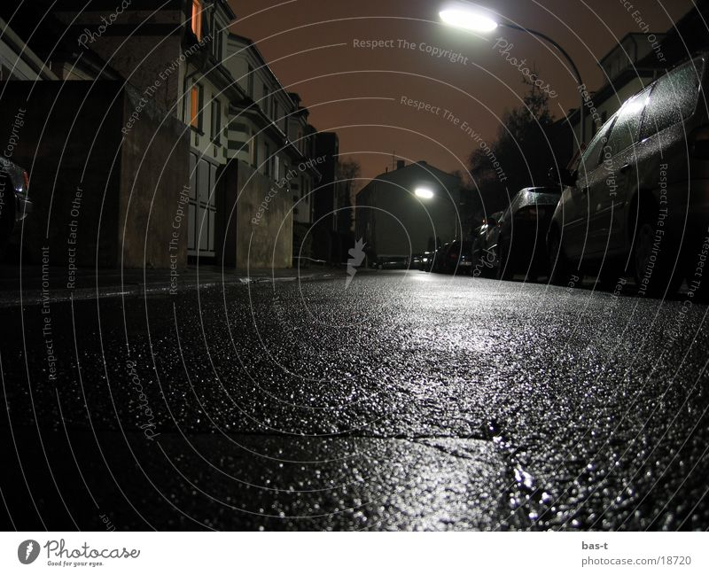Toad's eye at night Night Long exposure Worm's-eye view Toad migration Wet Lantern Street frog's eye Painted frog caul