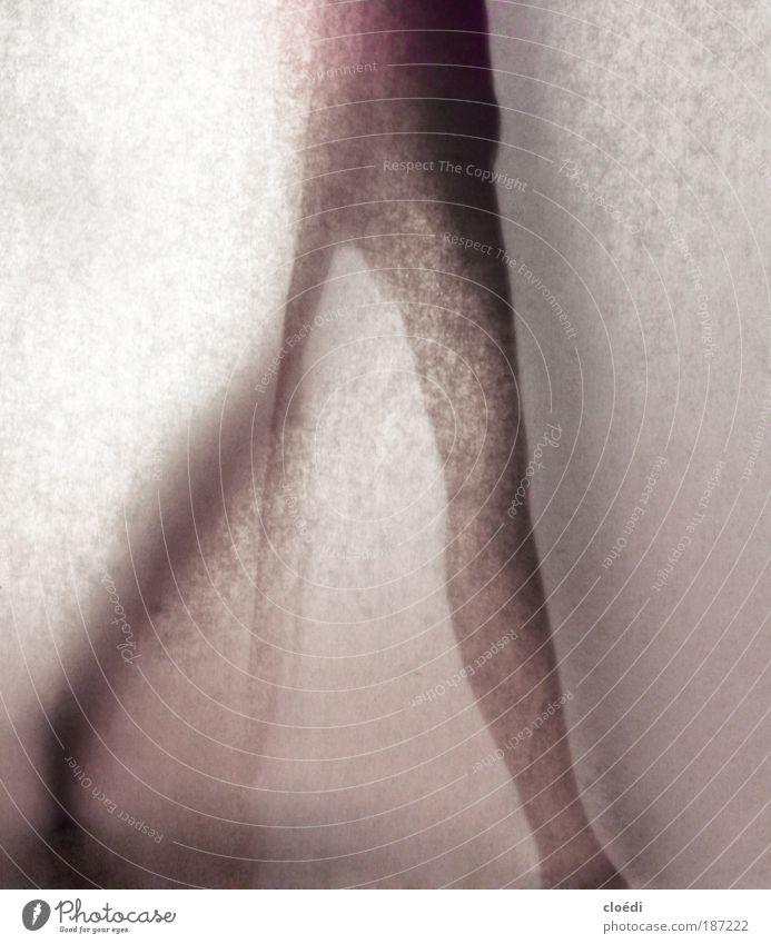 Human being Beautiful Red Black Gray Legs Feet Dance Pink Walking Violet Thin Studio shot Shadow
