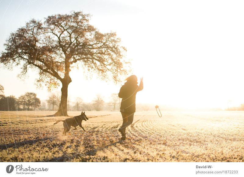 movement Healthy Life Contentment Playing Human being Feminine Woman Adults Youth (Young adults) 1 Nature Landscape Cloudless sky Sun Sunrise Sunset Sunlight