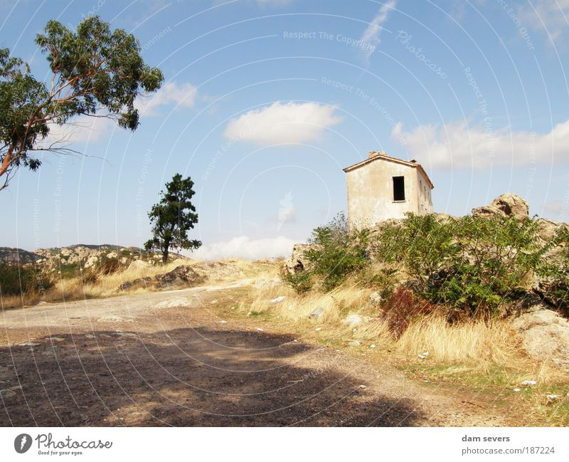 Nature Tree Summer Calm House (Residential Structure) Clouds Loneliness Window Grass Landscape Field Facade Europe Bushes Broken Hill