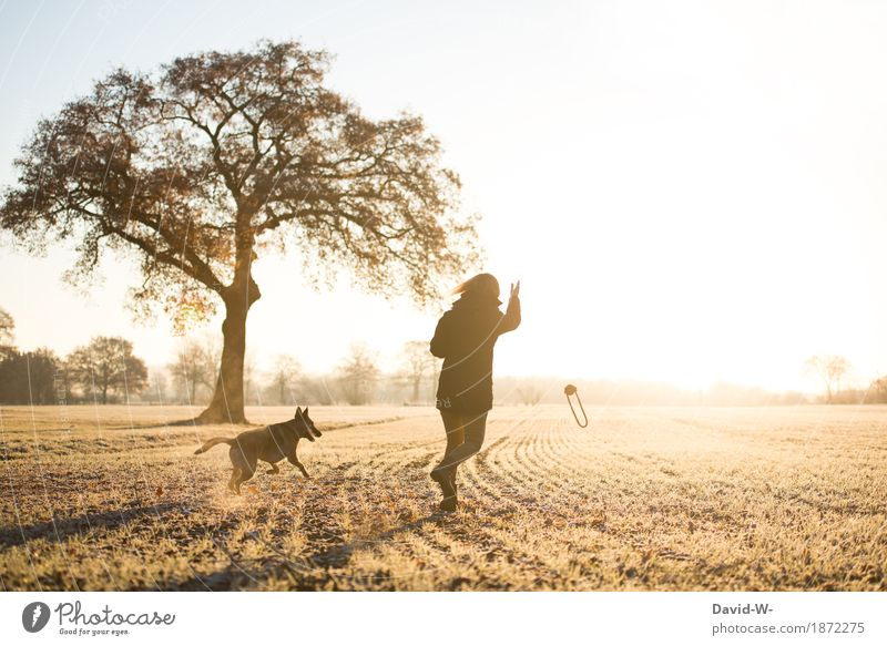 Woman Human being Nature Dog Youth (Young adults) Young woman Tree Animal Winter Lifestyle Adults Feminine Style Art Playing