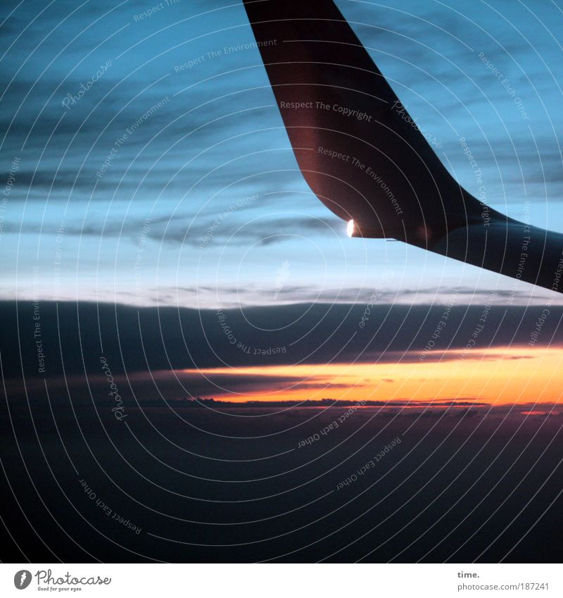 Riders on the storm Airplane Sky Heaven Clouds Flying Aviation Means of transport Exterior shot Copy Space bottom Sanddrift Wing Signal Sunset Freedom Infinity