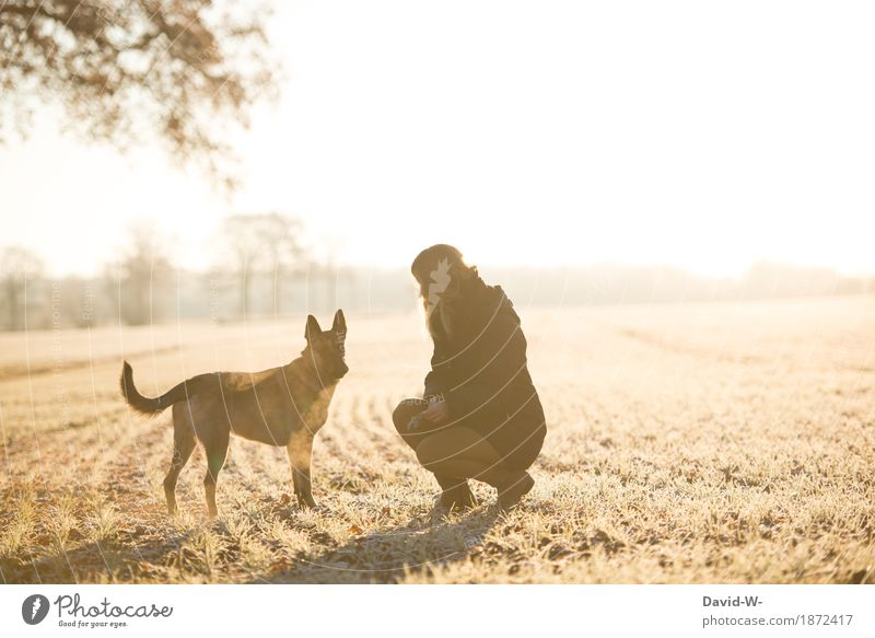 Woman and dog on the meadow stroll Dog Winter To go for a walk mistress out winter Cold upbringing Obey
