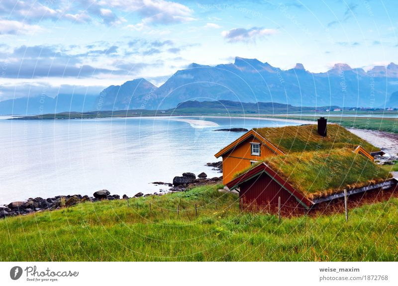 Norway island in fjord. Cloudy Nordic day Relaxation Vacation & Travel Tourism Trip Far-off places Expedition Camping Summer Beach Ocean Island Mountain
